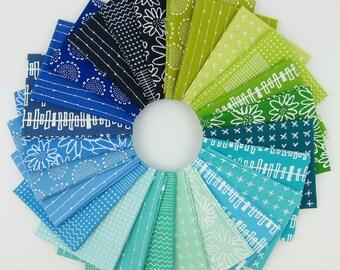 Blueberry Park Cool Fat Quarter Bundle - Karen Lewis Textiles - Robert Kaufman - 25 Fat Quarters