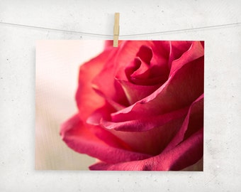 floral photography, botanical, red rose, romantic, girly, california, summer, home decor, wall art