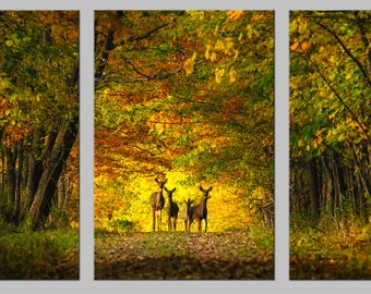 Large Metal Print, Triptych, Deer Family, Nature Photography, Golden Autumn Forest, Fall Colors, Magic, Enchanted Forest, Fairy Land
