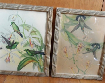 Picture pair of hummingbirds in textured frames / John Gould, I B Fisher Co. vintage bird picture / picture frame pair