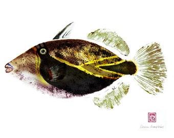 8 x 10 Hawaiian Fish Print Humuhumu Hawaii State Fish Gyotaku