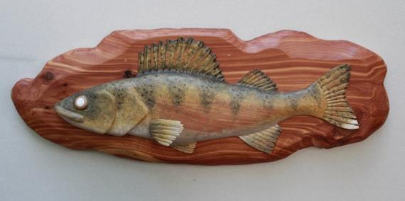 Walleye carving on red cedar