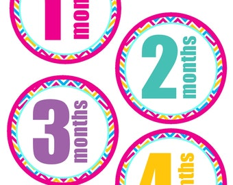 Baby Girl Month Stickers, Baby Milestone Stickers, Monthly Baby Stickers