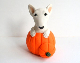 Autumn Bull Terrier Pumpkin Sculpture by Raquel at theWRC hand sculpted polymer clay Collectible DOG
