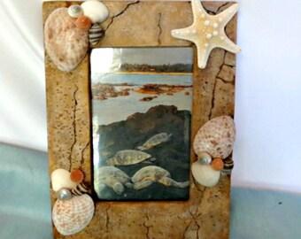 Beach decor photo frame_Seashell frame with sea turtles