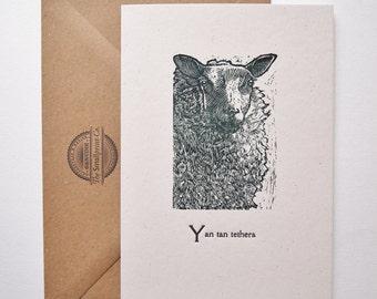 Sheep letterpress greetings card Farmyard Friends series