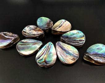 10pcs 20x15mm Abalone Curved Teardrop Beads Shell Beads Paua Teardrop Beads