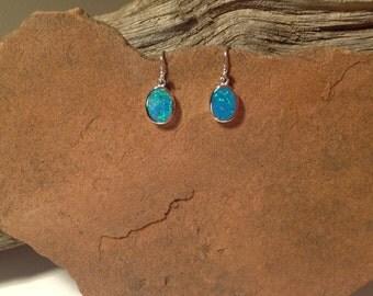 Blue Opal Earrings w/FREE SHIPPING