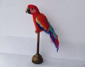 OOAK Realistic  Macaw Miniature Dollhouse 1:12 scale