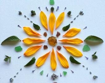 Sunflower & Sea glass Mandala