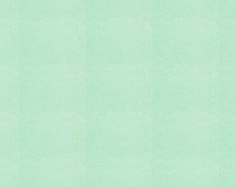 Solid Mint Minky Fabric - By The Yard - Girl / Boy / Gender Neutral