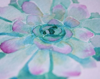 Norma Succulent | Original Watercolor Painting