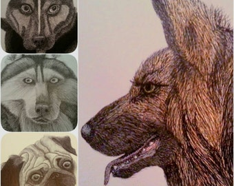 Bespoke Dog Pen And Ink Drawing Single Subject