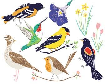 Bird Clip Art, Hummingbird Clip Art, Spring Birds, Spring Clipart