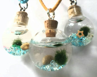 Living, growing Marimo Necklace with marimo moss ball, Living eco-system necklace, Marimo Aquarium necklace, Marimo Terrarium Necklace