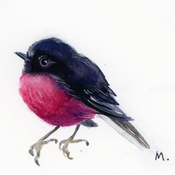 "Pink Robin - Watercolor - 4"" x 4 1/2"""