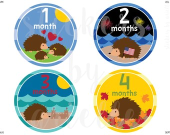 Month by Month Baby Stickers - Hedgehog Theme