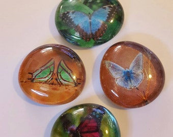 Set of 4 colorful super strong glass magnets, Spring, flower butterfly magnets, nature, floral refrigerator magnets, butterflies & flowers