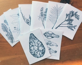 Set of 10 Illustrated Cards