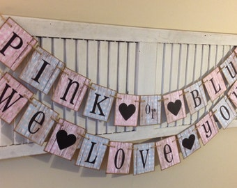 Gender Neutral Baby Shower Banner Bunting Sign Garland Shabby Chic Distressed Decoration Boy or Girl Pink and Blue