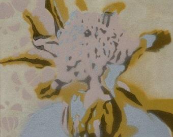 Waratah stencil 2/60
