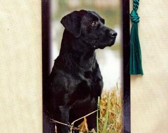 Black Labrador Bookmark