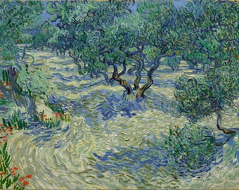 Olive Orchard by Vincent Van Gogh, Giclee Canvas Print
