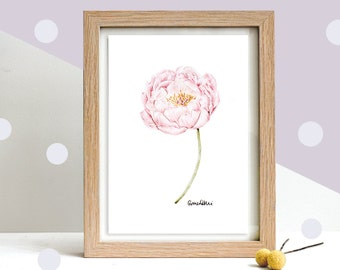 Peony Botanical Drawing, Botanical Art Print, Flower Illustration, Mother's Day Gift, Pink Flower | Limited Edition of 20 Giclee Art Prints