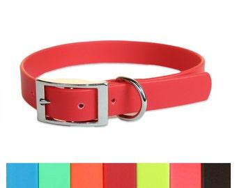 Waterproof Basic Dog Collar