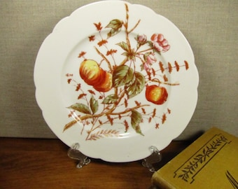 F & M - Fruit and Flower Pattern Plate - Wide Lip - Made in Bohemia