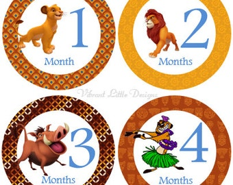 Monthly Baby Stickers Boy, Girl, Milestone Stickers, Month to Month Stickers Boy, Girl, Lion King #14