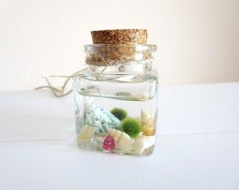 sale Marimo Moss Ball Aquarium-Miniature marimo moss  ball Terrarium - Marimo Terrarium  - Marimo Moss  necklace -lucky Orb Marimo Moss Ball