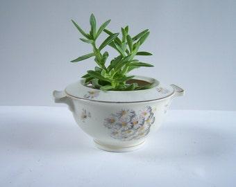 Sugar bowl Theodore Haviland Limoges porcelain daisies pattern vintage  Made in France