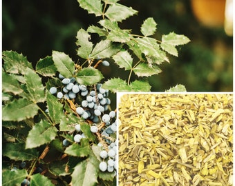 Oregon Grape Root, soap making supplies, also for herbal extracts, tinctures, teas, salves, creams, lotions or lip balms. lemonbalm