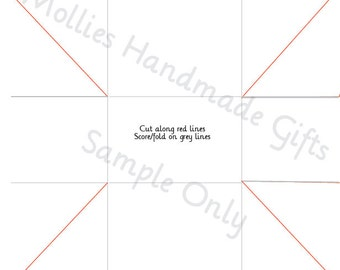 Instant Download Favour Gift Bag/Box Template