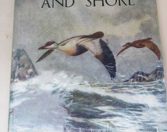 Vintage Nature Book - Birds of the Sea and Shore _ Lovely Prints