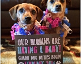 Our Humans Are Having A Baby! Printable Chalkboard Photo Prop / Digital File / Dog Baby Announcement / Guard Dog Duty - Digital JPEG file