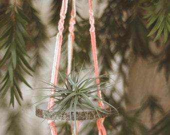 Hanging White + Pink Macrame Wood Slice Air Plant Shelf; Macrame; Boho; Macrame Planter; Wood Shelf; Hanging Macrame; Plant Shelf; Planter