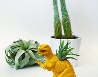 Small Mustard Yellow Ceratosaurus Dinosaur Planter w/ Air Plant; Dinosaur Planter; Air Plant; Planter; Desk Accessory; Dinosaur; Home Decor
