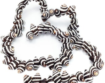 Shell beads, black white, 14 mm, 1 strand, 64 St