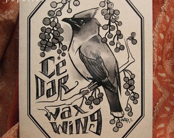 Cedar Waxwing Cards & Envelopes (5-of-a-Feather pack)