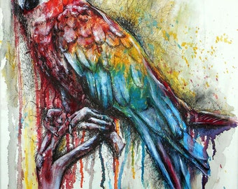 Parrot Artwork Print