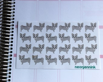 White & Grey Long Haired Chihuahua Stickers
