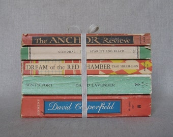Vintage Paperback Book Bundle