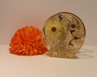 Vintage Lucite Plastic Napkin Holder - Daisy and Butterfly - Vintage Pladtic