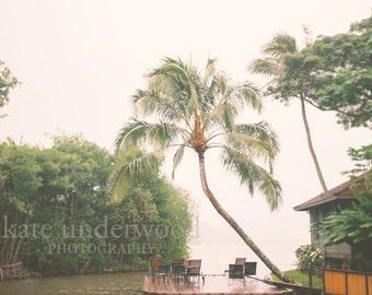 Photography, Paradise Bay Hawaii, Palm Tree, Home Decor, Beach House Decor, Fine Art Photography, Hawaii,