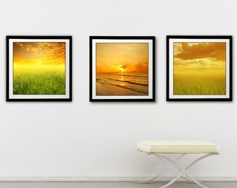 Sunset Print Set, Set of 3 prints, Nature Prints, Wall Art, Landscape Home Decor, Green Grass, Rice Fields, Beach Art, Dawn, Sunset Photo