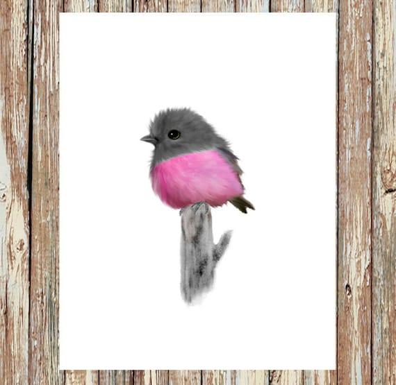 Pin on Birdies  |Pink Baby Birds