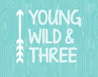 Young Wild & Three Birthday SVG  Third Birthday Shirt Design  Arrow Birthday Design SVG  eps svgs silhouette