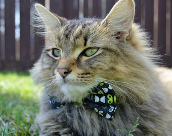papillon moderne chat noeud papillon collier chat moderne chat noeud papillon chaton noeud papillon collier chaton collier chat papillon noir pour